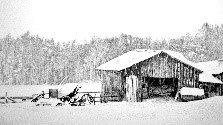 DEEP SNOW II